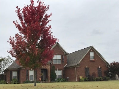 Atoka Single Family Home For Sale: 37 Christmas