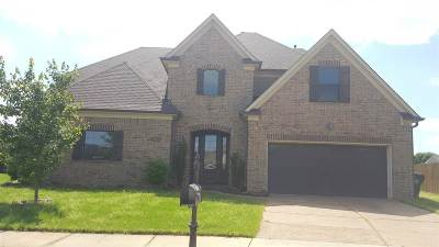 Bartlett Single Family Home For Sale: 8743 Sterland