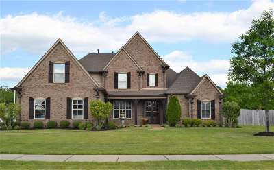 Collierville Single Family Home For Sale: 1308 Mountain Side