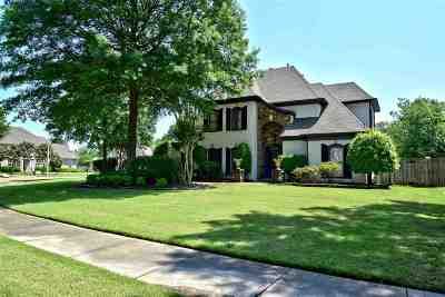 Collierville Single Family Home For Sale: 9825 N Houston Oak