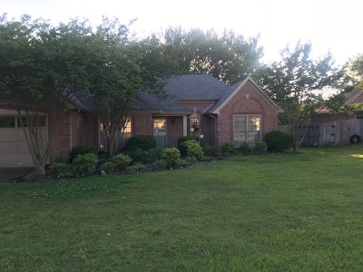 Memphis Single Family Home For Sale: 421 Cherry Hollow