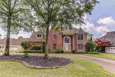 Collierville Single Family Home For Sale: 2163 Lake Page
