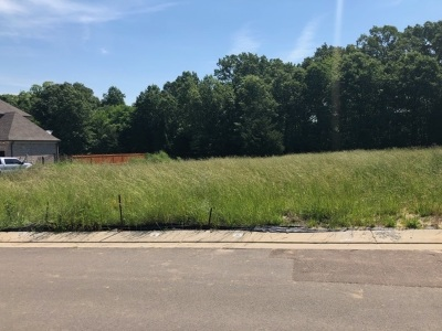 Collierville Residential Lots & Land For Sale: 40 Addiegreen
