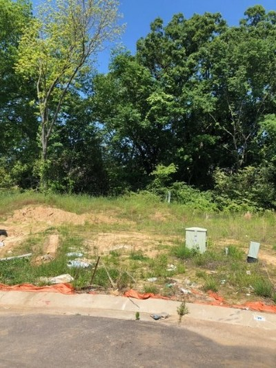 Collierville Residential Lots & Land For Sale: 55 Addiegreen