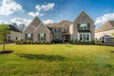 Collierville Single Family Home For Sale: 524 Tender Oaks