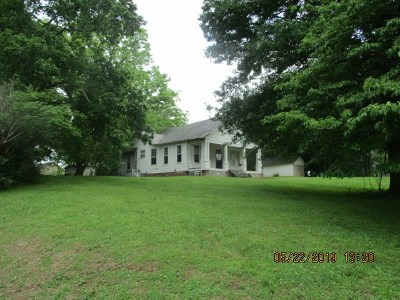 Henning Single Family Home For Sale: 368 Graves