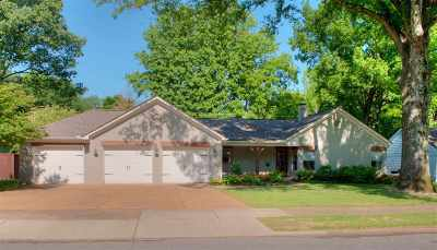 Memphis Single Family Home For Sale: 451 Vescovo