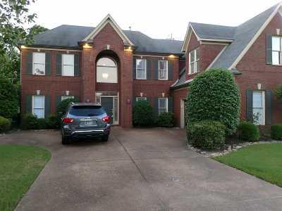 Memphis Single Family Home For Sale: 197 Walnut Gardens