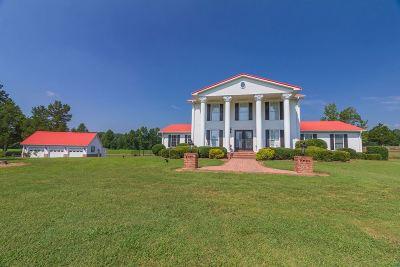 Selmer Single Family Home For Sale: 406 Hicks