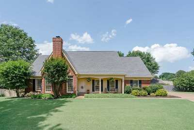 Collierville Single Family Home For Sale: 908 Valleywood