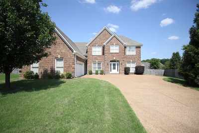 Bartlett Single Family Home For Sale: 4612 Marble Hill