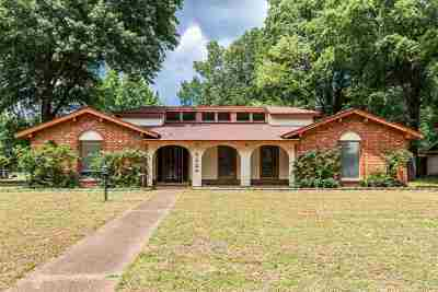 Memphis Single Family Home For Sale: 8224 Echo Hills
