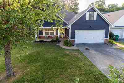 Olive Branch Single Family Home For Sale: 2041 Plumas