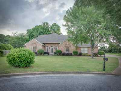 Memphis Single Family Home Contingent: 554 Heather Leigh