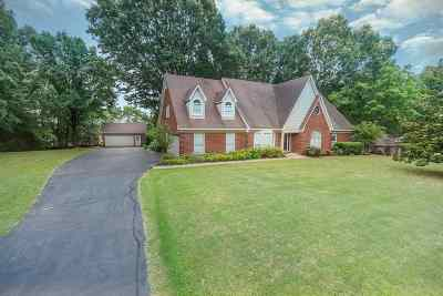 Olive Branch Single Family Home For Sale: 8903 Windersgate