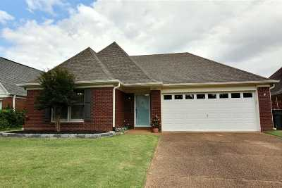 Collierville Single Family Home For Sale: 380 Scarlet Tanager