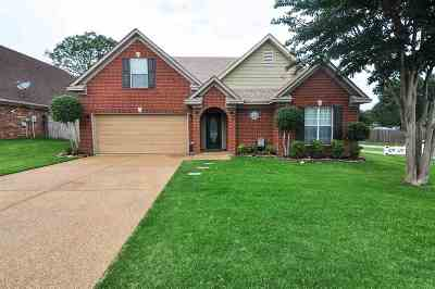Walls MS Single Family Home For Sale: $220,000
