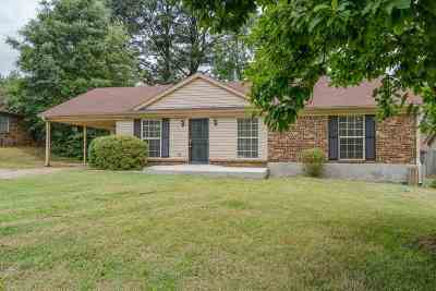 Memphis Single Family Home For Sale: 3499 Old Brownsville