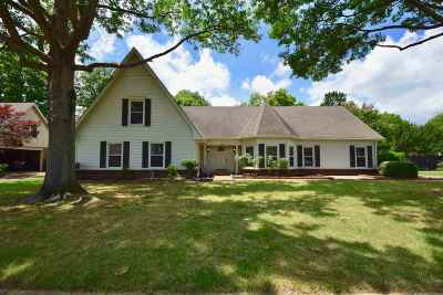Memphis Single Family Home For Sale: 3931 Fun Valley