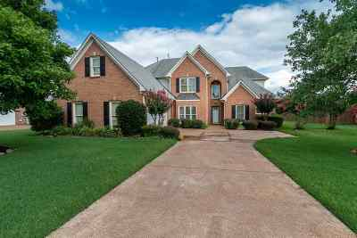 Collierville Single Family Home For Sale: 384 Grand Steeple