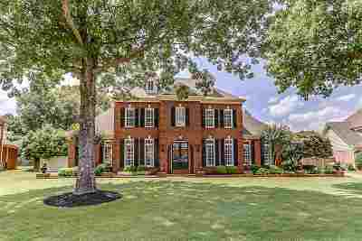 Collierville Single Family Home Contingent: 981 Fall Springs