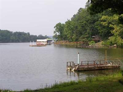 Savannah Single Family Home For Sale: 780 Rinks