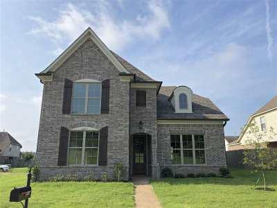 Olive Branch Single Family Home For Sale: 6237 Arlington