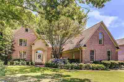 Collierville Single Family Home For Sale: 9863 S Houston Way