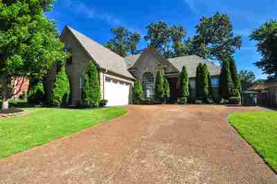 Memphis Single Family Home Contingent: 9597 Morning Shadow