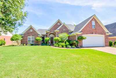 Memphis Single Family Home For Sale: 9185 Old Brook