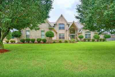 Olive Branch Single Family Home For Sale: 4309 Abele