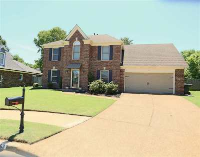 Collierville Single Family Home For Sale: 163 McDonald Glen