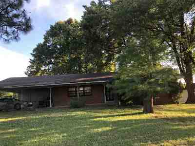 Memphis Single Family Home For Sale: 185 Hillview