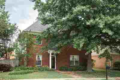 Memphis Single Family Home For Sale: 800 Silver Sands