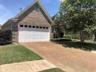 Memphis Single Family Home Contingent: 329 Fleets Hill
