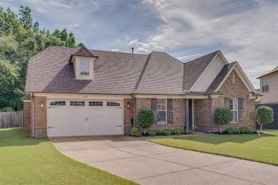Bartlett Single Family Home For Sale: 3520 Gap Knoll