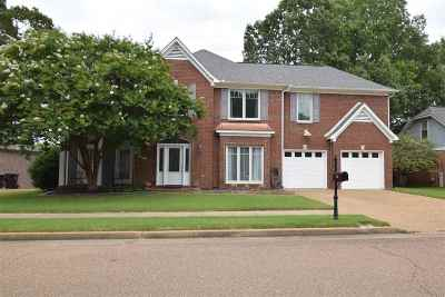 Collierville Single Family Home For Sale: 738 Gable