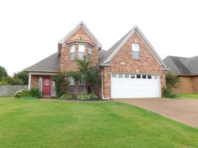 Bartlett Single Family Home For Sale: 8217 Rockbridge