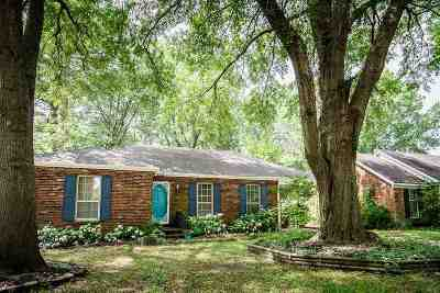 Shelby County Single Family Home For Sale: 5325 Mesquite