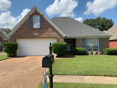 Olive Branch Single Family Home For Sale: 4954 Graham Lake