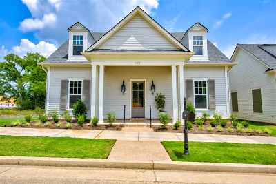 Collierville Single Family Home Contingent: 448 S Shea
