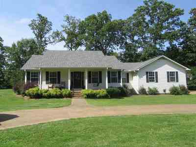 Savannah Single Family Home For Sale: 385 Robin Hood