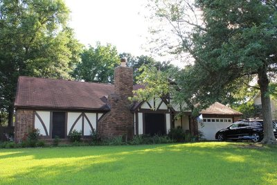 Memphis Single Family Home For Sale: 243 German Creek