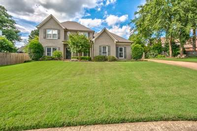 Collierville Single Family Home Contingent: 180 Mistybrook