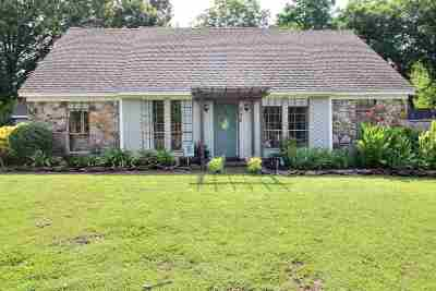 Collierville Single Family Home For Sale: 738 Joe