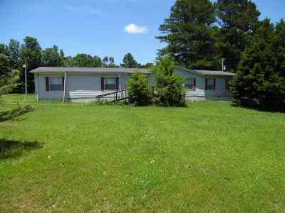 Stantonville Single Family Home For Sale: 1960 Mount Vinson