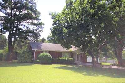 Ripley Single Family Home For Sale: 297 Lynn