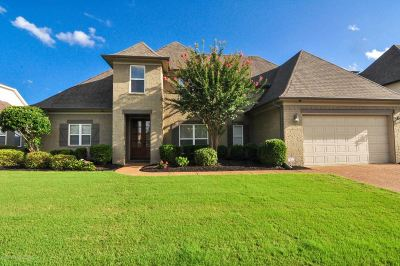 Southaven Single Family Home For Sale: 2933 S Cherry