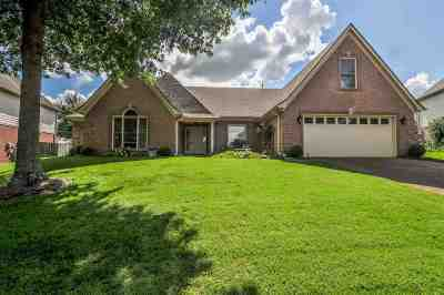Lakeland Single Family Home For Sale: 3811 Lighthouse
