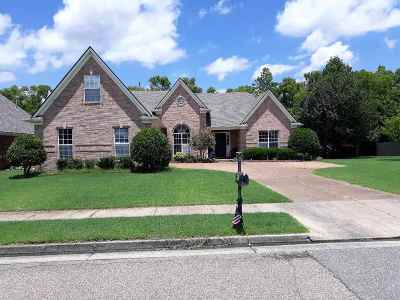 Bartlett Single Family Home Contingent: 8184 W White Wing